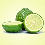 Bergamot - Fragrance Oil