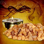 Frankincense - Fragrance Oil