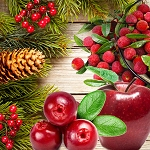 Country Christmas Fragrance Oil