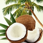 Coconut Craze