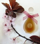 Hanami Blossoms fragrance oil