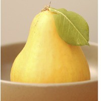 French Vanilla Pear - Fragrance Oil